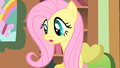 Fluttershy didn't see that coming S01E22.png