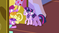 Rabid fan ponies at Twilight's castle door S7E14