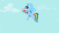 "Rainbow Dash ""Any questions"" S2E07.png"