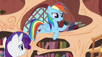 "Rainbow Dash ""it's a kind of rock"" S4E18"