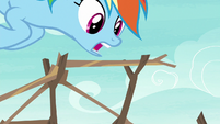 Rainbow Dash stacking branches together S8E9