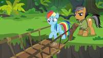 Rainbow Dash testing the suspension bridge S6E13