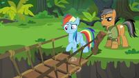Rainbow Dash testing the suspension bridge S6E13