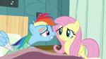 Rainbow Dash whining S02E16