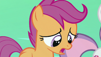 Scootaloo apologizing to Terramar S8E6