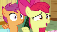 "Apple Bloom ""you asked Rarity"" S9E22"