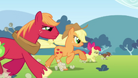 Applejack, Big McIntosh, Apple Bloom and Winona running S3E03