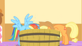 Applejack and Rainbow Dash dunking their head into the water S1E25.png
