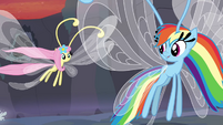 Breezie Fluttershy and Rainbow flying away S4E16