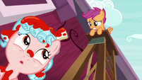 Cozy Glow looking up at Scootaloo S8E12
