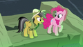 "Daring Do ""I think we need more than hope"" S7E18.png"