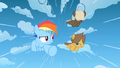 Filly Rainbow and the colts racing S1E23.png