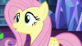 """Fluttershy """"It's more than fine"""" S5E21.png"""