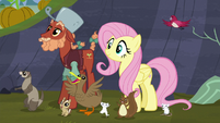 Fluttershy and animals happy S5E23
