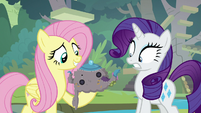 Fluttershy holding a teapot with tea cozy S8E4