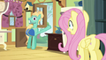 Fluttershy looks at Zephyr Breeze in shock S6E11.png