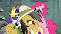 Main 6 sees Daring Do walking away S4E04
