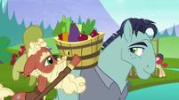 McColt stallion helps Hooffield stallion with fruit baskey S5E23