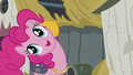 "Pinkie ""and our cutie marks"" S5E8.png"