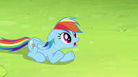 Rainbow wants to fly with the best team S4E10