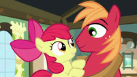 Apple Bloom hops onto Big Mac S5E17