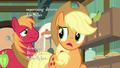 "Applejack ""you have any idea, Big Mac?"" S7E13.png"