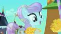 Corncob eating pony rejuvenated S3E2.png