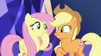 Fluttershy and AJ excited for their quest S8E23