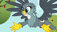 Gabby --anygriffon has ever been about anything!-- S6E19