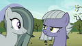 Marble Pie agreeing with Limestone Pie S8E3.png