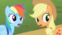 Rainbow Dash and Applejack surprised S4E14