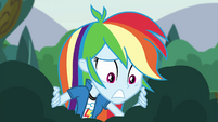 Rainbow Dash worriedly looks down EG3