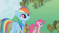 Rainbow and Pinkie take a break S1E04