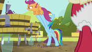 S05E17 Rainbow Dash podrzuca Scootaloo