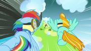 S3E07 Rainbow i Lightning lecą po flagę