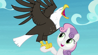 Sweetie Belle with an eagle on her hoof S8E6