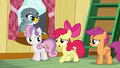"Apple Bloom ""hold on just a hoofstep"" S6E19.png"