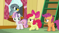 "Apple Bloom ""hold on just a hoofstep"" S6E19"