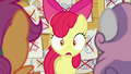 Apple Bloom in wide-eyed surprise S6E4.png