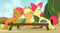 Applejack, Apple Bloom and Babs smiling S03E08