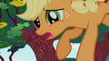 Applejack about to crash S1E23.png
