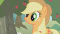 Applejack wakes up S1E04.png
