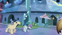 Crystal Ponies coming out of their homes S3E01