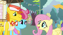 "Fluttershy ""went to see them gathering their pollen"" S4E16"