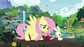 Fluttershy feeding Angel an apple S8 opening.png