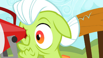 Granny Smith pokes her eye with the megaphone S2E05