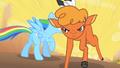 Little Strongheart Dodging Rainbow Dash S1E21.png