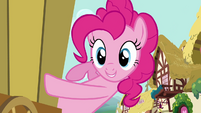 Pinkie Pie D Stands For Donkey S02E18