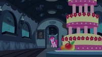 Pinkie Pie looking at the MMMM S2E24