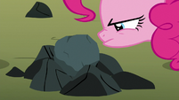 Pinkie Pie looking closely at the rock S8E3